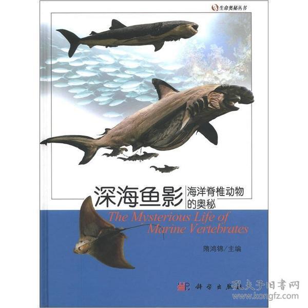 生命奥秘丛书·海洋鱼影:海洋脊椎动物的奥秘