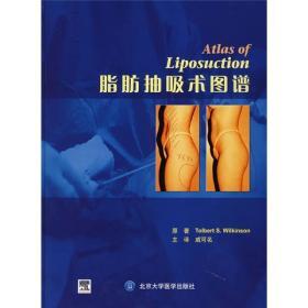 脂肪抽吸术图谱(E)(美)威尔金森  著,戚可名  等译