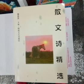 散文诗精选:1993-1998
