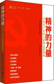 精神的力量:中国共产党伟大精神最新阐释