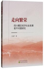 走向繁荣--四川藏区经济社会发展若干问题研究