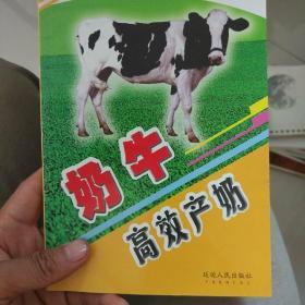 奶牛高效产奶
