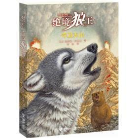 绝境狼王系列:守卫火山(3)