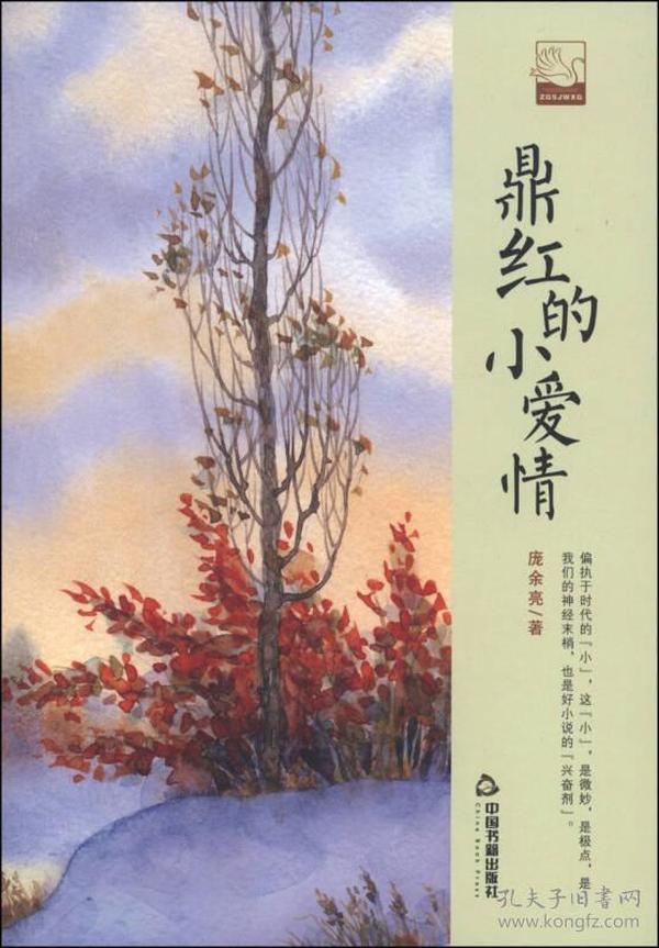 中国书籍文学馆.小说林--鼎红的小爱情