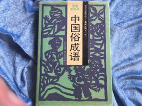 中国俗成语
