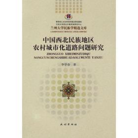中国西北民族地区农村城市化道路问题研究(兰州大学民族学精选文库)