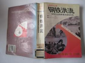 钢铁洪流-----英军反法西斯著名战役纪实----走向胜利之路(1994年1版1印)