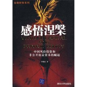 感悟涅槃:中国风险投资和非公开权益资本的崛起