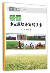 新疆小麦栽培研究与技术