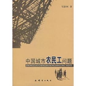 中国城市农民工问题