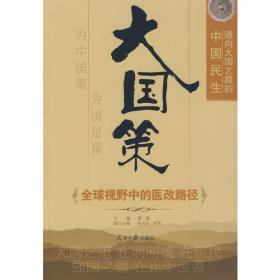 大国策——通向大国之路的中国民生:全球视野中的医改路径