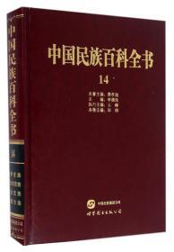 中国民族百科全书14