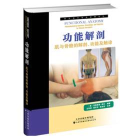 功能解剖-肌与骨骼的解剖.功能及触诊