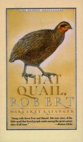 That Quail  Robert