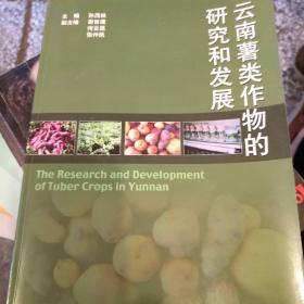 云南薯类作物的研究和发展