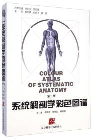 系统解剖学彩色图谱