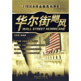 华尔街飓风   21世纪全球金融危机解密