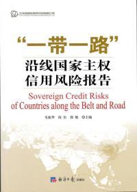 """""""一带一路""""沿线国家主权信用风险报告"""