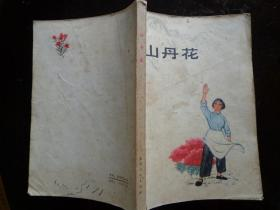 山丹花 本书收人了北京业余作者创作的十五篇短篇小说。这些作品塑造了战斗在国防战线和农业战线上的先进人物的形象,新人新事新气象犹如红艳艳的山丹花遍地开放。四幅油画插页。