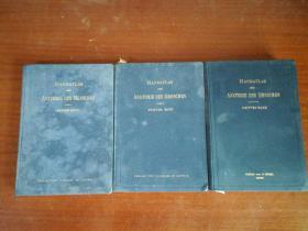 HANDATTAS DER ANATOMIE DES MENSCHEN:外文原版,曼森解剖学,3册合售J