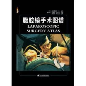 腹腔镜手术图谱