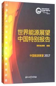 9787518323159-hs-世界能源展望中国特别报告