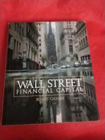 WALL STREE FINANCIAL CAPITA 华尔街金融中心