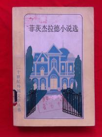菲茨杰拉德小说选 二十世纪外国文学丛书