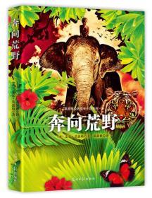 莫波格经典成长小说系列1: 奔向荒野