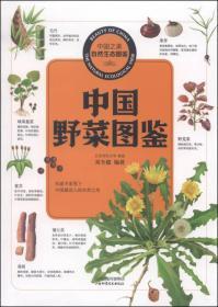 中国之美自然生态图鉴 中国野菜图鉴