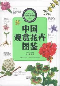 中国之美自然生态图鉴 中国观赏花卉图鉴