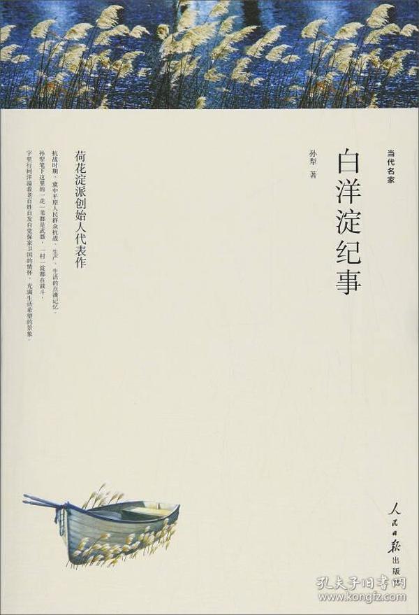 畅销小说 白洋淀纪事