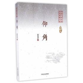 仰角(中国专业作家小说典藏文库)