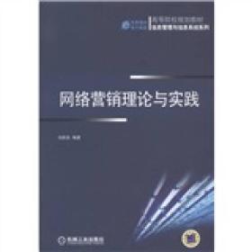 高等院校规划教材·信息管理与信息系统系列:网络营销理论与实践