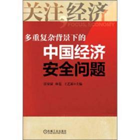 多重复杂背景下的中国经济安全问题