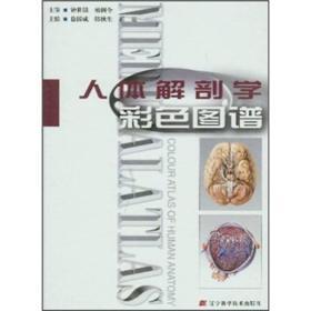正版现货直发 人体解剖学彩色图谱 徐国成  辽宁科学技术出版社9787538140446