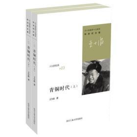 正版包邮微残-青铜时代(上下册)王小波精品集03特别纪念版CS9787563932207