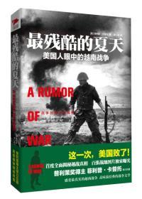 最残酷的夏天:美国人眼中的越南战争