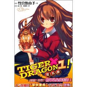 TIGER×DRAGON1!:龙与虎