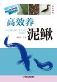 高效养泥鳅-双色印刷
