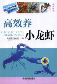 高效养小龙虾-双色印刷