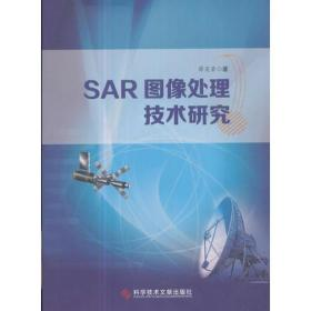SAR图像处理技术研究
