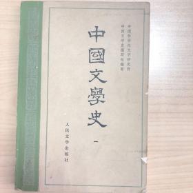 中国文学史 第 一册