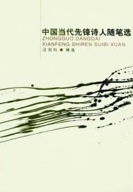 中国当代先锋诗人随笔选