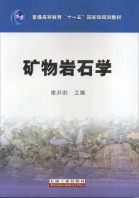 二手矿物岩石学陈世悦石油大学出版社9787563616435