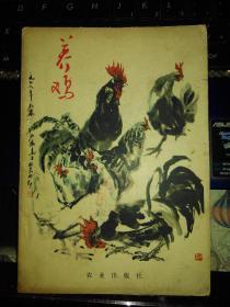 养鸡(插图版)