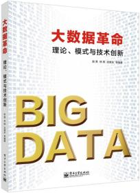 大数据革命:理论、模式与技术创新