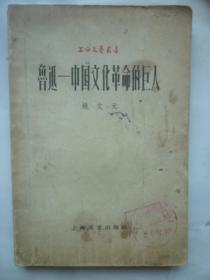姚X元著作  《鲁迅—中国文化革命的巨人》