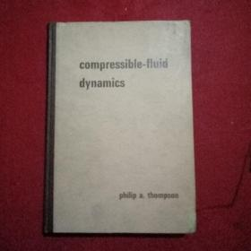 Compressible -fluid  dynamics ( 可压缩 fluid 动力学)