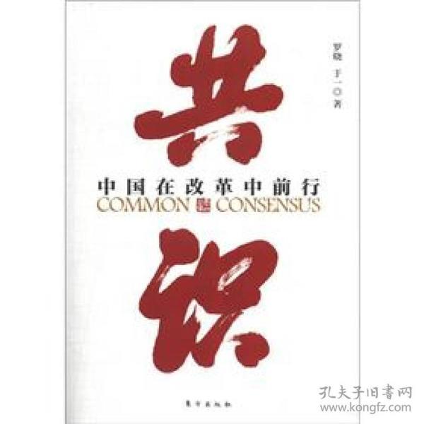 共识:中国在改革中前行